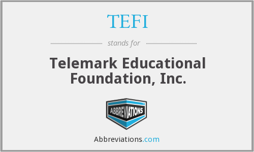 What does TEFI stand for?