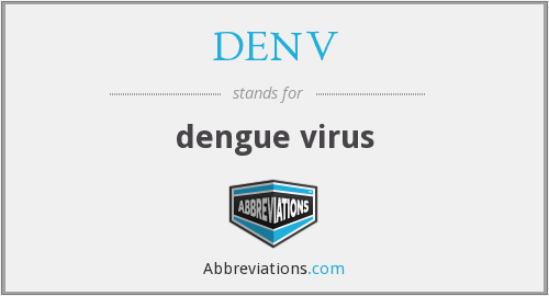 What does DENV stand for?