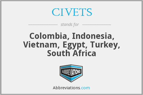 What does CIVETS stand for?