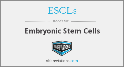 What does ESCLS stand for?