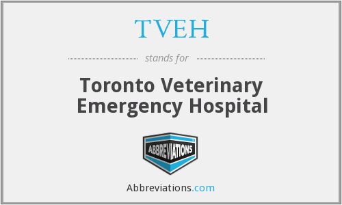 What does TVEH stand for?