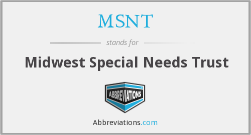 What does MSNT stand for?