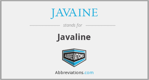 What does JAVAINE stand for?