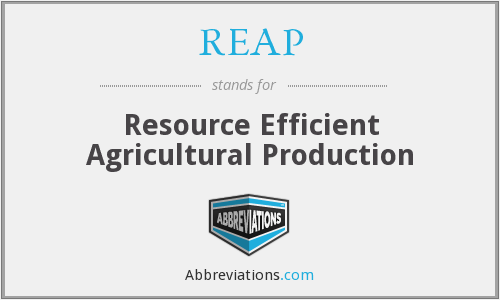 What does REAP stand for?