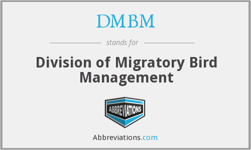 What does DMBM stand for?
