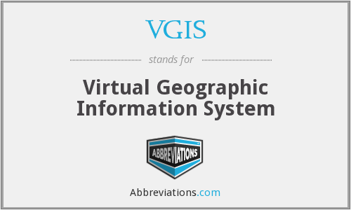 What does VGIS stand for?