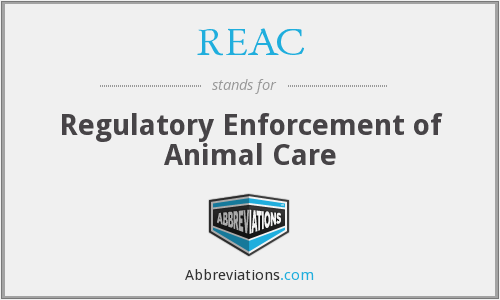 What does REAC stand for?