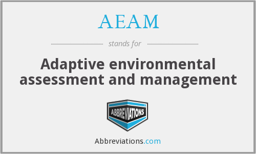 What does AEAM stand for?