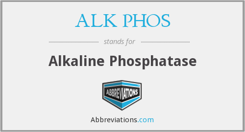 What does ALK PHOS stand for?