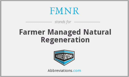 What does FMNR stand for?
