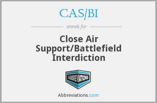 What does CAS/BI stand for?