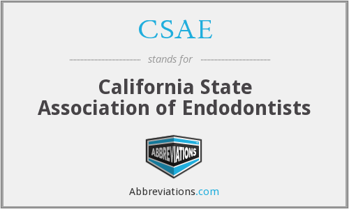 What does CSAE stand for?