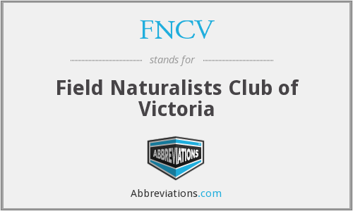 What does FNCV stand for?