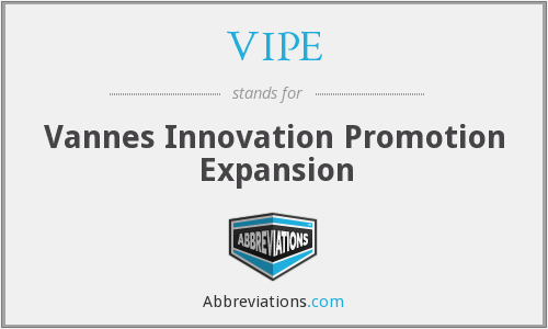 What does VIPE stand for?