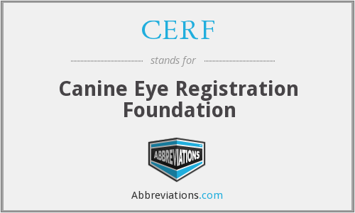 What does CERF stand for?