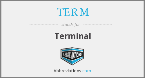 What does TERM stand for?