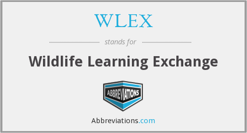 What does WLEX stand for?