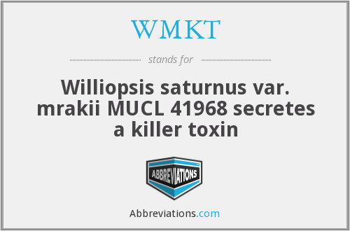 What does WMKT stand for?