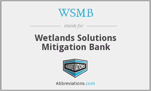 What does WSMB stand for?