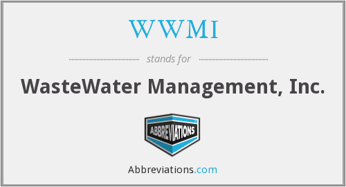 What does WWMI stand for?
