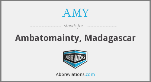 What does AMY stand for?