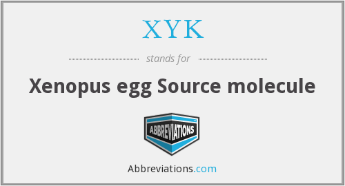 What does XYK stand for?