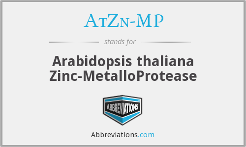 What does ATZN-MP stand for?