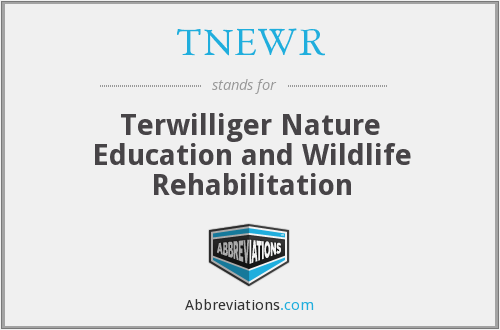 What does TNEWR stand for?