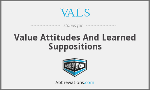 What does VALS stand for?
