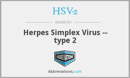 What does HSV-2 stand for?