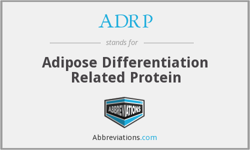 What does ADRP stand for?