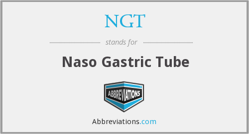 What does NGT stand for?