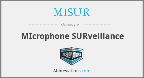 What does MISUR stand for?
