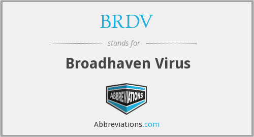 What does BRDV stand for?