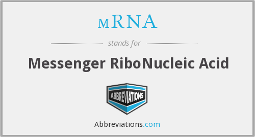 What does MRNA stand for?