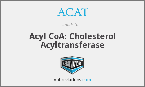What does ACAT stand for?