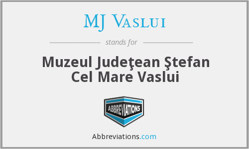 What does MJ VASLUI stand for?