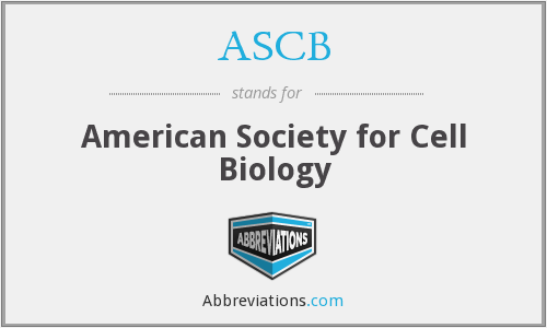 What does ASCB stand for?