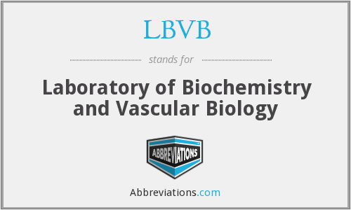 What does LBVB stand for?