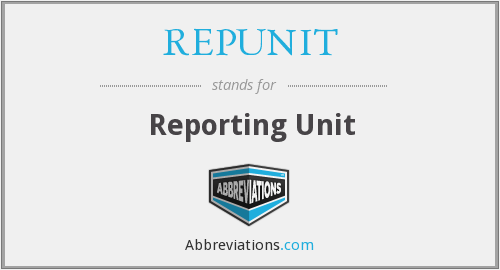 What does REPUNIT stand for?