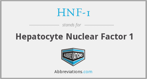 What does HNF-1 stand for?