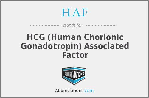 What does HAF stand for?