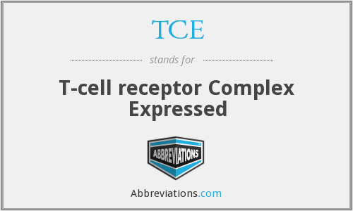 TCE - T-cell receptor Complex Expressed