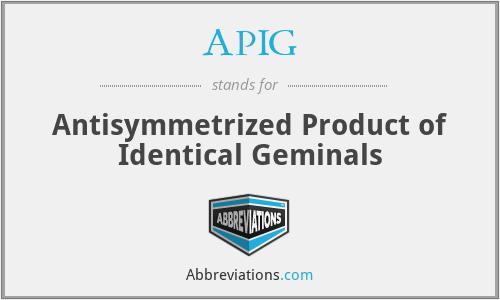 APIG - Antisymmetrized Product of Identical Geminals