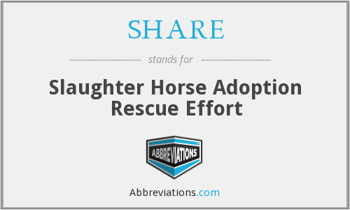SHARE - Slaughter Horse Adoption Rescue Effort
