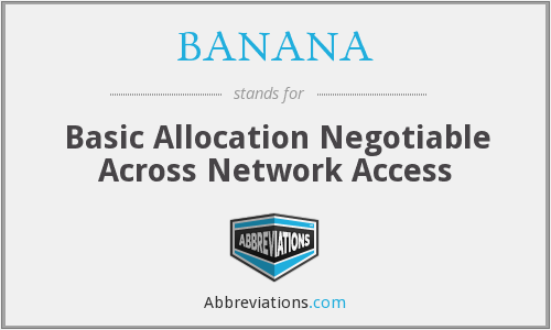 BANANA - Basic Allocation Negotiable Across Network Access