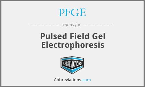 PFGE - Pulsed Field Gel Electrophoresis