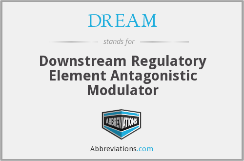 DREAM - Downstream Regulatory Element Antagonistic Modulator