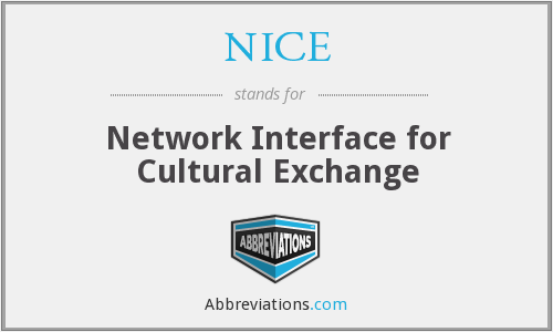 NICE - Network Interface for Cultural Exchange