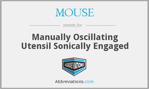 MOUSE - Manually Oscillating Utensil Sonically Engaged